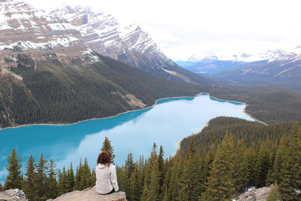 Lac Peyto - Les Rocheuses- Banff - Canada - Parenthèse Canadienne