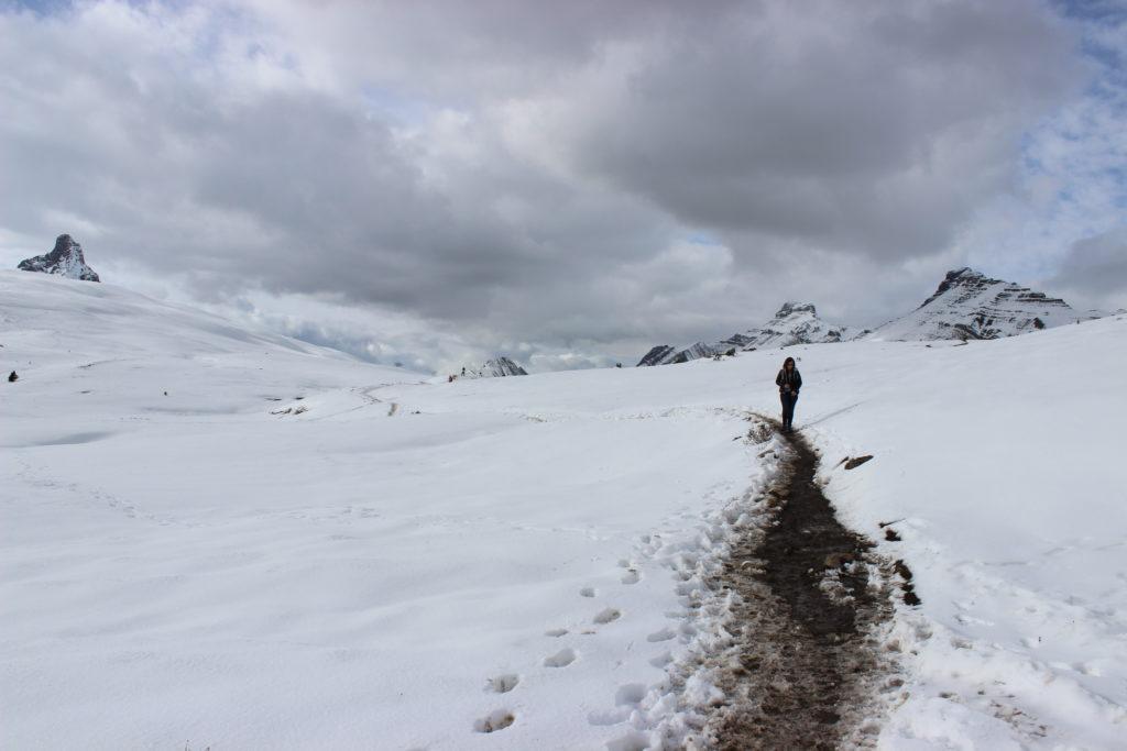 Saskatchewan Glacier - Les Rocheuses - Canada - Parenthèse Canadienne
