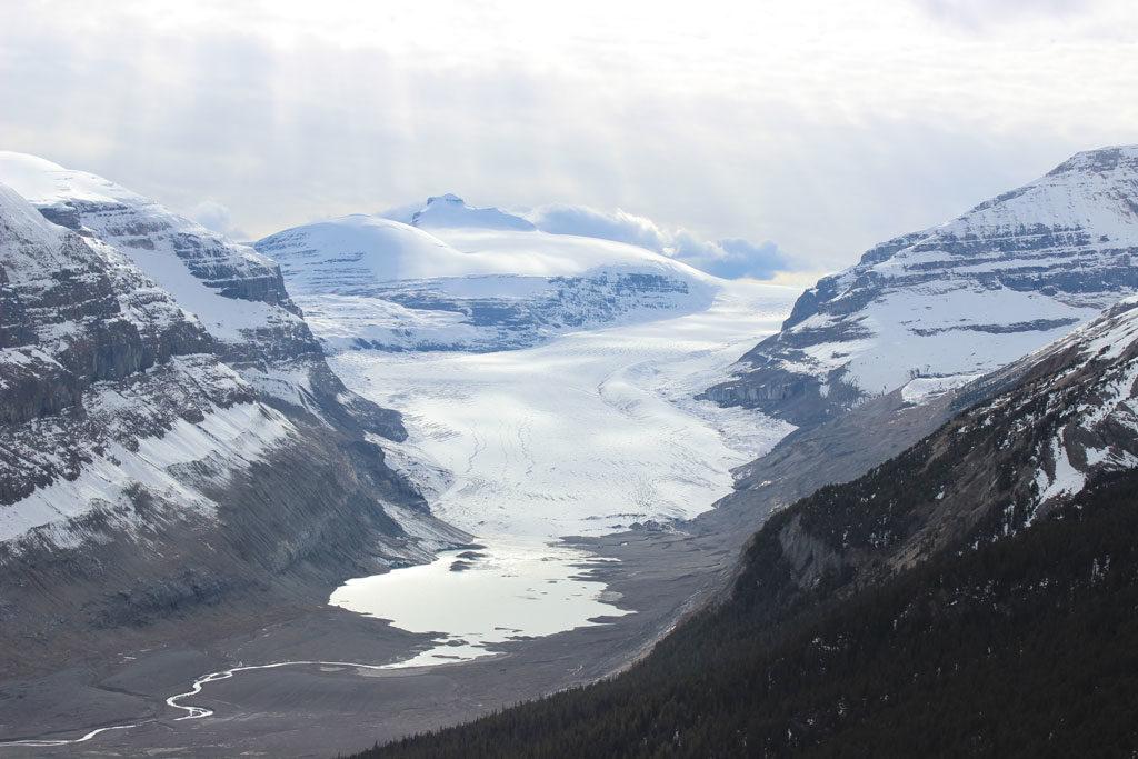 Glacier Saskachewan dans les Rocheuses