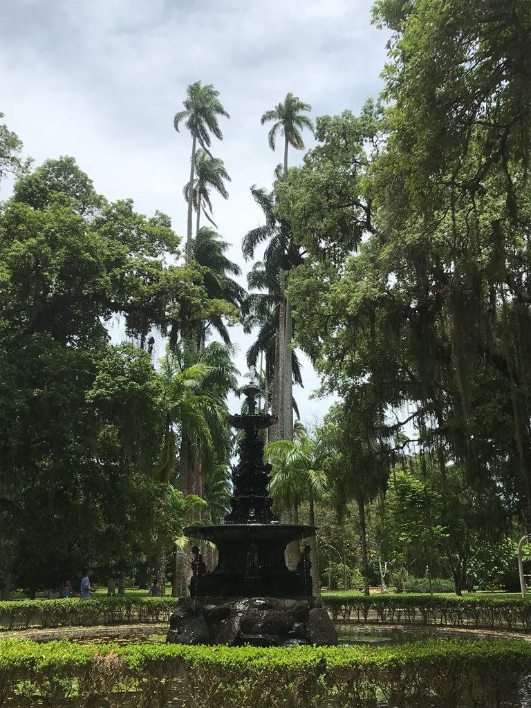 Jardin Botanique - Rio de Janeiro - Brésil - Parenthèse Brésilienne