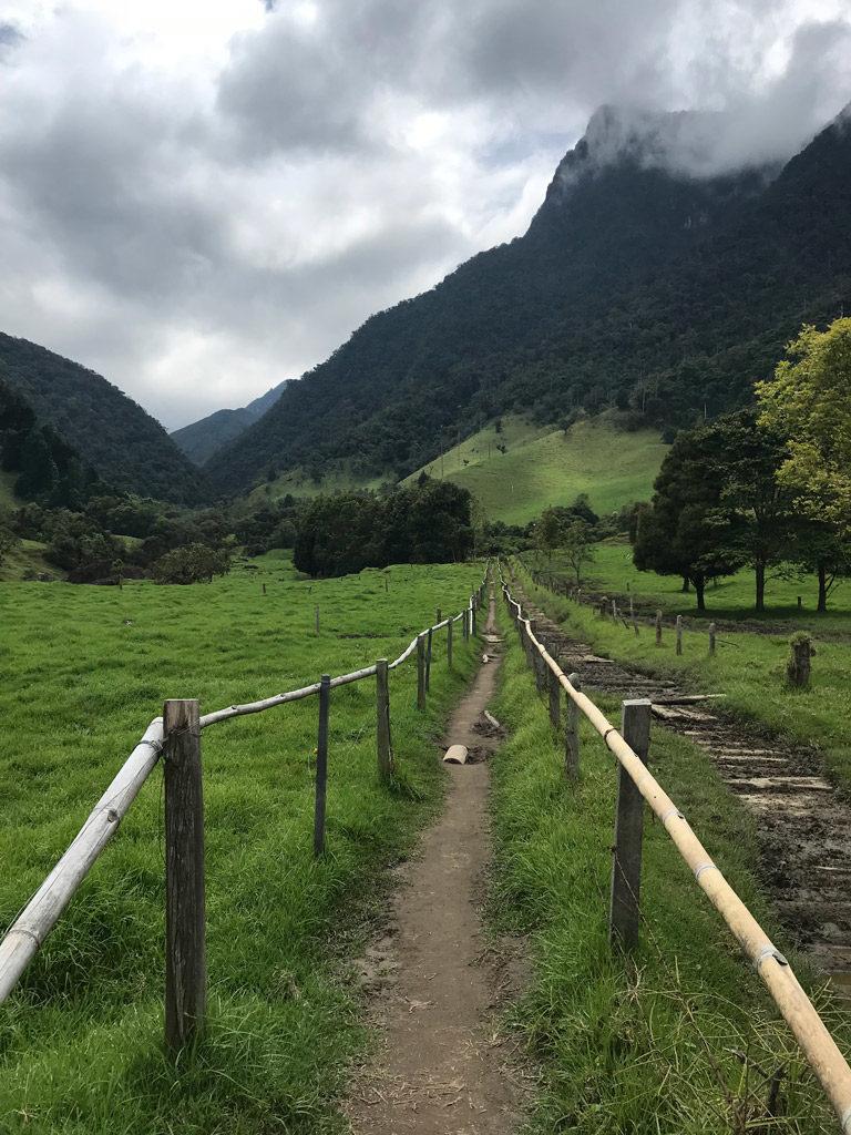 Sépart du trek de la Vallée de Cocora