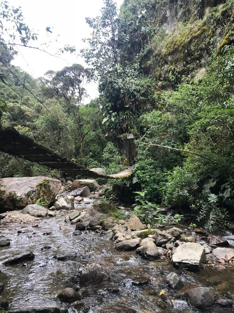 Petit pont à traverser dans la Vallée de Cocora